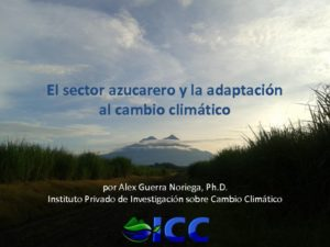 thumbnail of 6. AGuerra_SectorAzucarero_22may2015
