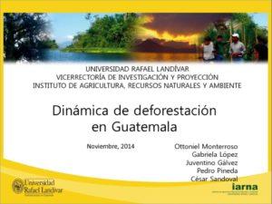 thumbnail of Dinamica deforestacion_Iarna