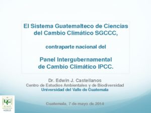 thumbnail of SGCCC E.Castellanos_08may 14