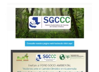 thumbnail of 11. Noticiero SGCCC_6feb17