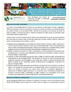 thumbnail of Hoja Informativa_MRV_No Carbono_14feb17