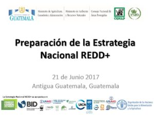 thumbnail of Estrategia Nacional REDD_Guatemala