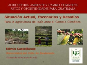 thumbnail of 2. ECastellanos_CC y agricultura en Guatemala_22may2015