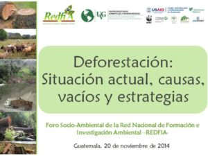 thumbnail of Deforestacion_Peten_CONAP