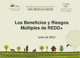 thumbnail of Beneficios y Riesgos Multiples