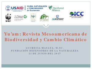 thumbnail of Revista Cientifica Yuam