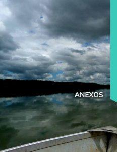 thumbnail of 1erRepCCGua_Anexos